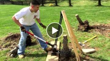 Remove tree stump with hi-lift jack