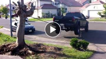 TRUCKS VS TREE STUMPS - Who Will Win?