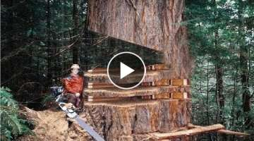 Intelligent Technology Trees Felling Unusual Woodwork Turbo ChainSaw Log Splitter Sawmill Saw