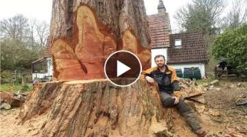 Dangerous Biggest Wood Chainsaw Largest Trees Cutting Fastest, Amazing Tree Cutting Machines