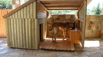 10 Wonderful Dog House