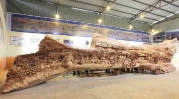 Chinese sculptor spent 4 years carving masterpiece into tree trunk
