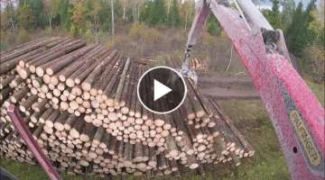 Timber Loading - Palfinger Epsilon M12L