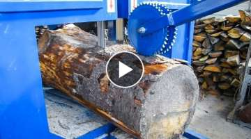 I was Shocked When See This Beast Wood Multisaw Sawmilling Working. Crazy Big Wood Cutting Machin...
