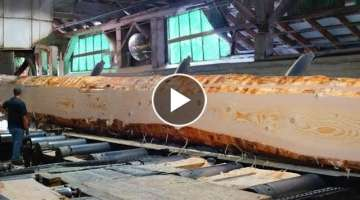 Inside the Largest Wood Sawmill in US! Huge Douglas Fir Logs Milling to Lumber