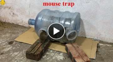 Mouse Reject/Water Bottle Mouse Trap/How to make a mouse trap homemade?/Animal Trap
