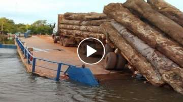 Dangerous Idiots Fastest Biggest Logging Wood Truck Heavy Tree Felling Wood Sawmill Machines Work...
