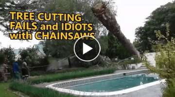 Tree cutting fails and idiots with chainsaws. FAIL COMPILATION.