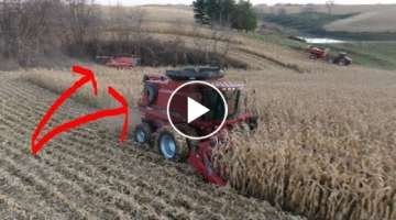 2 Combines. Same Field. Acres, Be Afraid | Harvest Video 23