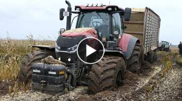 Case IH 300 Optum Gets Totally Stuck in The Mud During Maize / Corn Chopping
