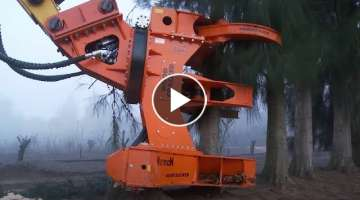 Latest Technology Long Reach Excavator Machine Working - Extreme Fast Skill Cutting Big Tree