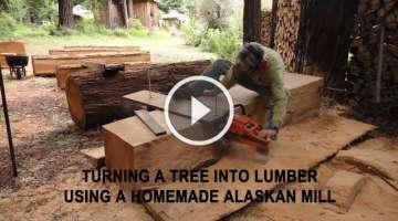 Turning a tree into lumber using a homemade Alaskan Mill