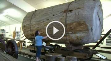 The Kauri Museum, Matakohe, Northland, New Zealand - 1 min 3 secs