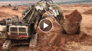 Terex RH170 Face Shovel Excavator Loading Dumpers