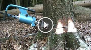 Hydraulic felling of North Forest