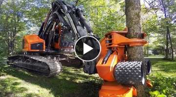 Dangerous Fast Destroy Big Tree Machine Working - Extreme Equipment Excavator Cutting Tree Machin...