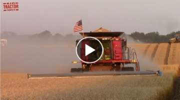 WHEAT HARVEST with Case IH Axial-Flow Combines